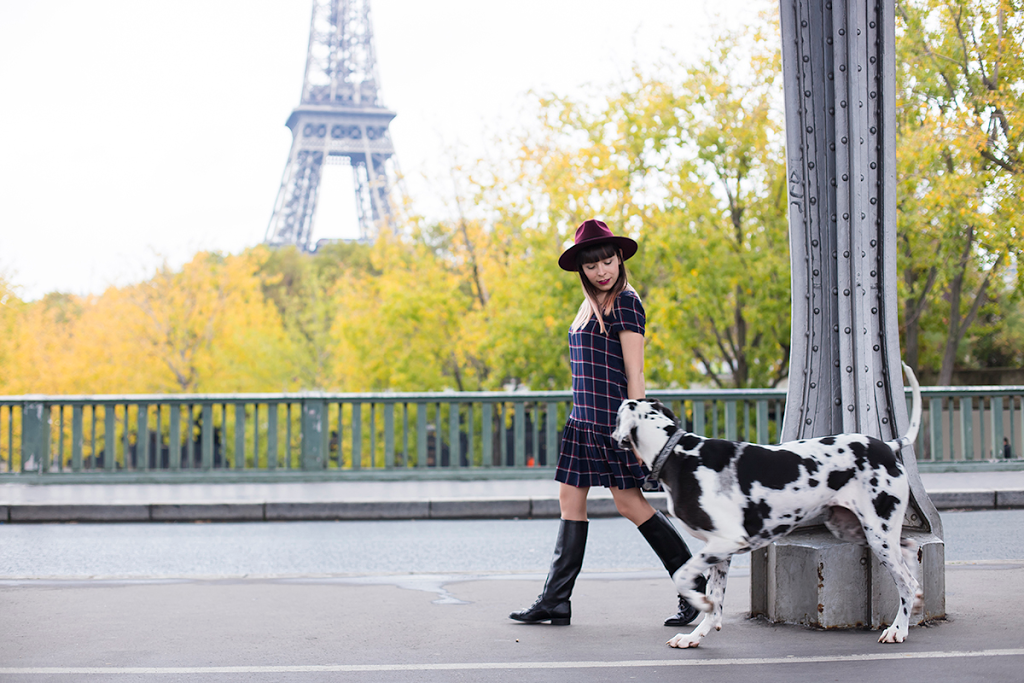 British Style by Ylenia Cuellar in Paris - Great Dane