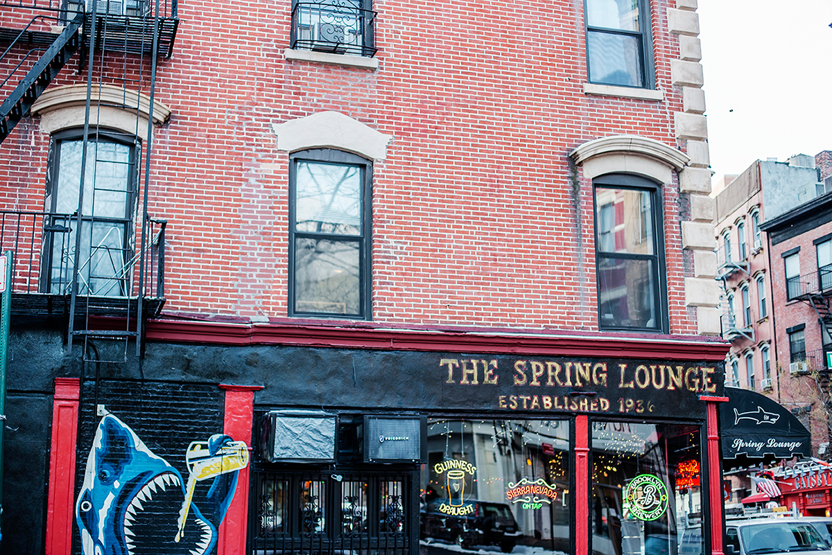 Spring Lounge Photos of Winter in New York City february 2015