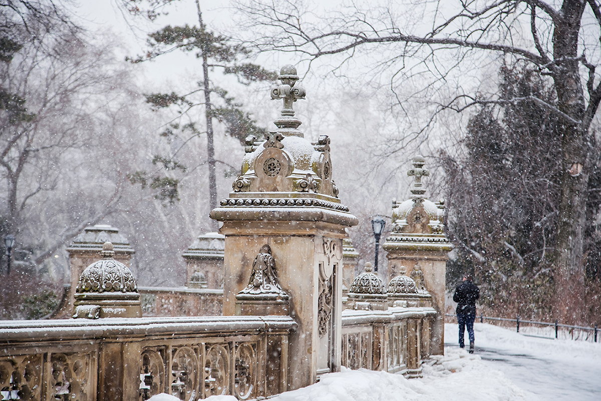 New York City february 2015 photo journal central park views