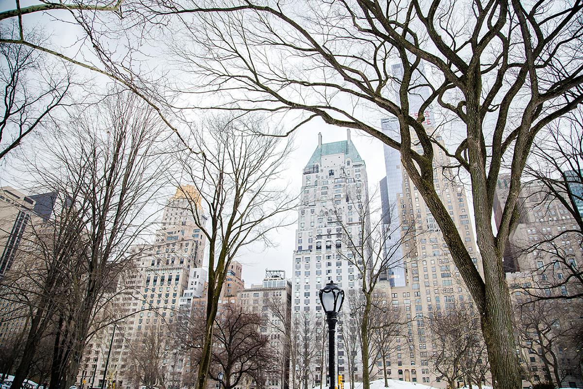 New York City february 2015 photo journal Central park