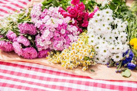 Midsommar celebration in Paris with Carin Olsson from Paris in four months